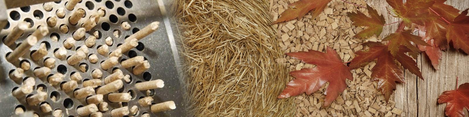 Для производства пеллет используем все виды биосырья